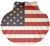 Sea shell with US flag