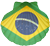 Shell with Brazilian flag